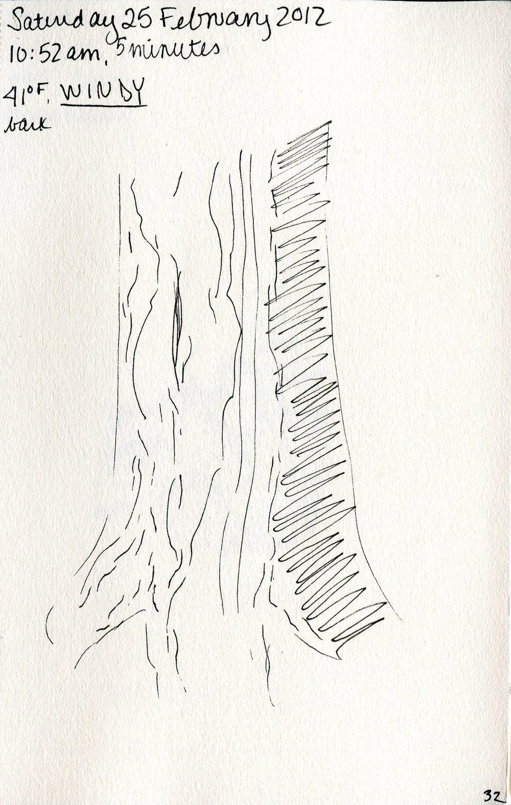 Tree 033.jpg