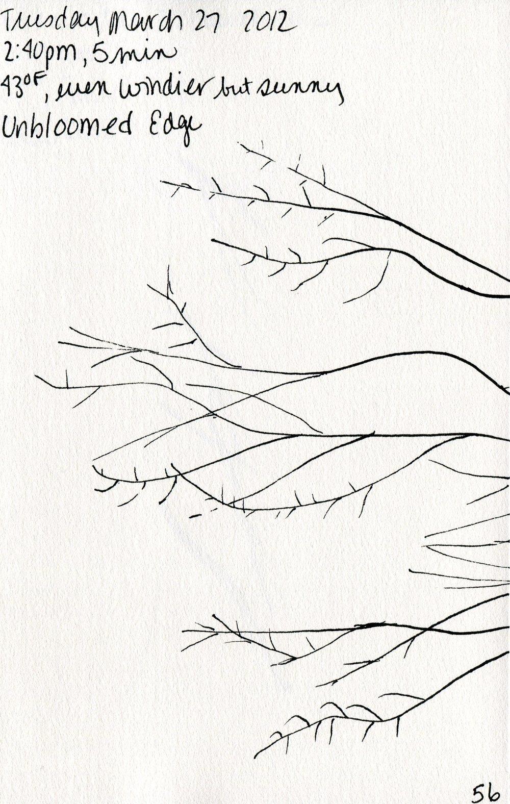 Tree 057.jpg