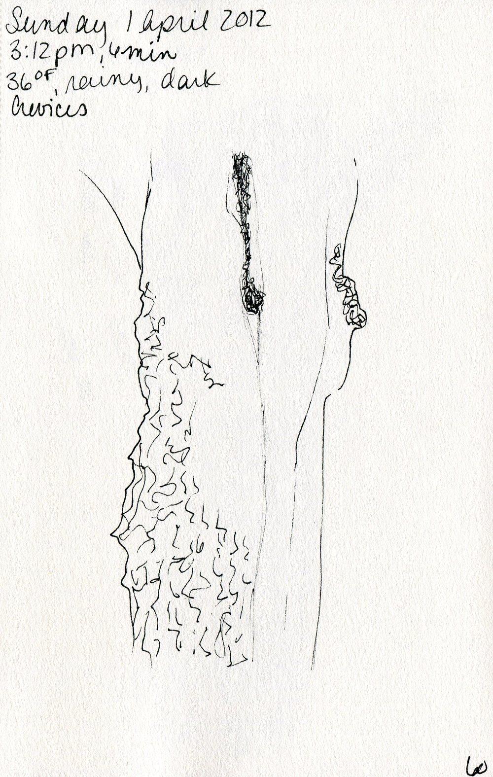 Tree 061.jpg