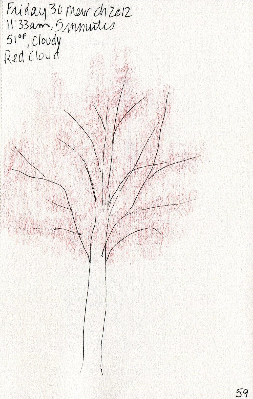Tree 060.jpg