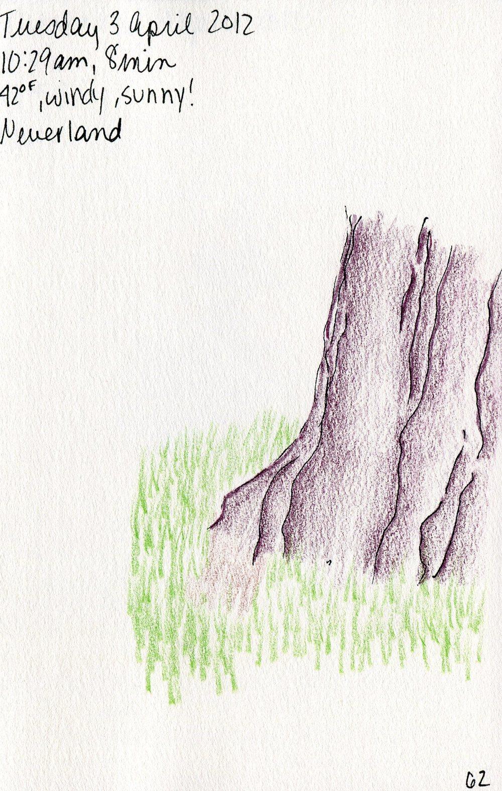 Tree 063.jpg