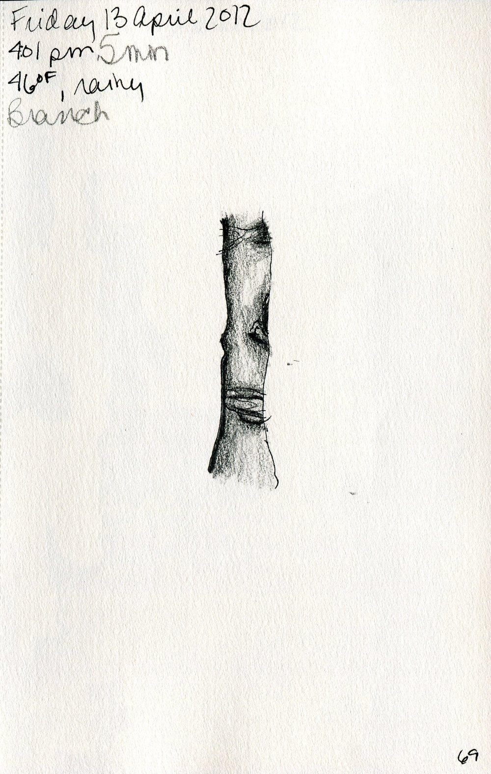 Tree 070.jpg