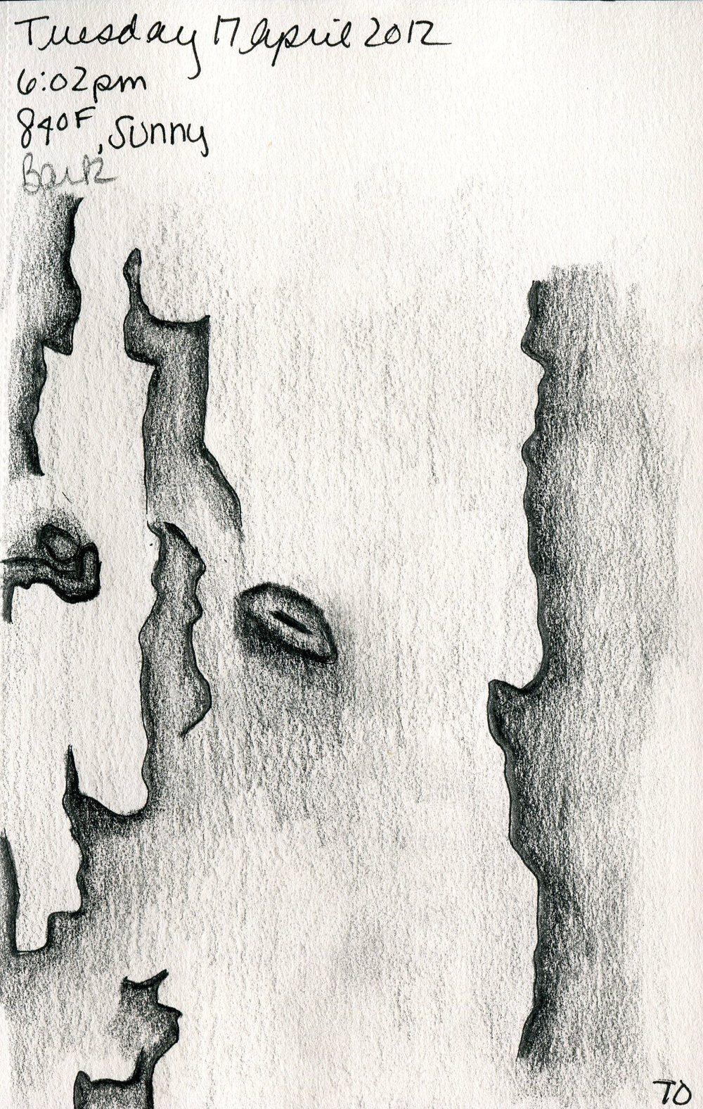 Tree 071.jpg