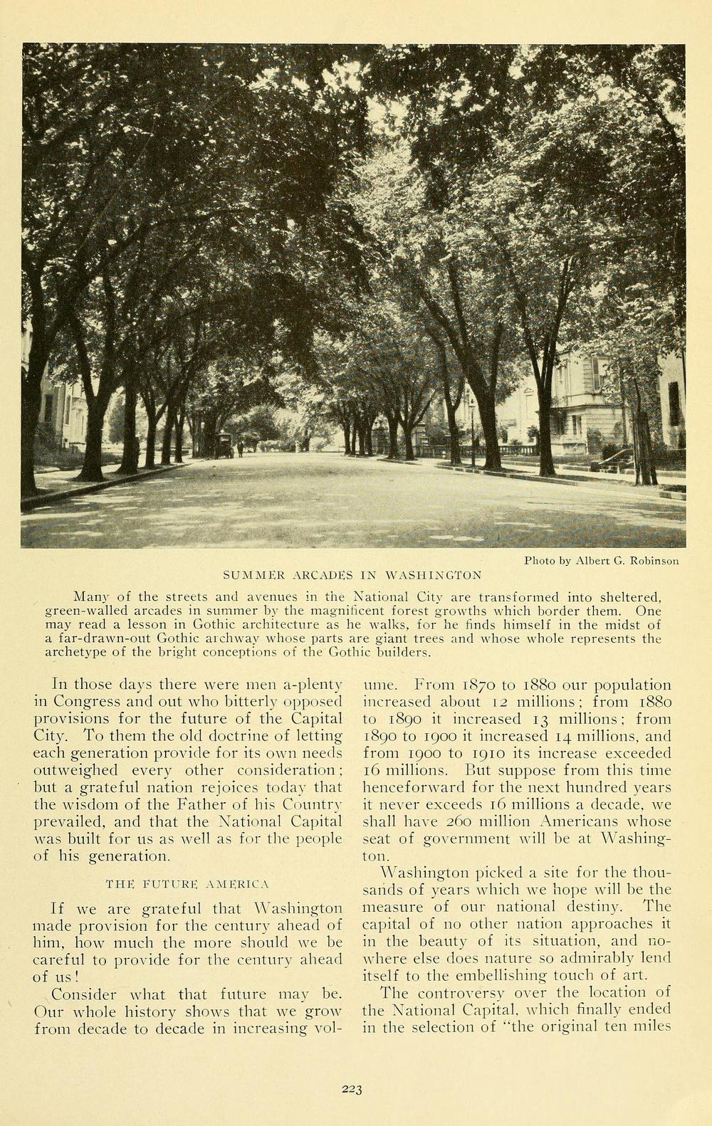 Trees in Washington, DC in 1915