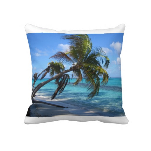 "20""x20"" throw pillow"