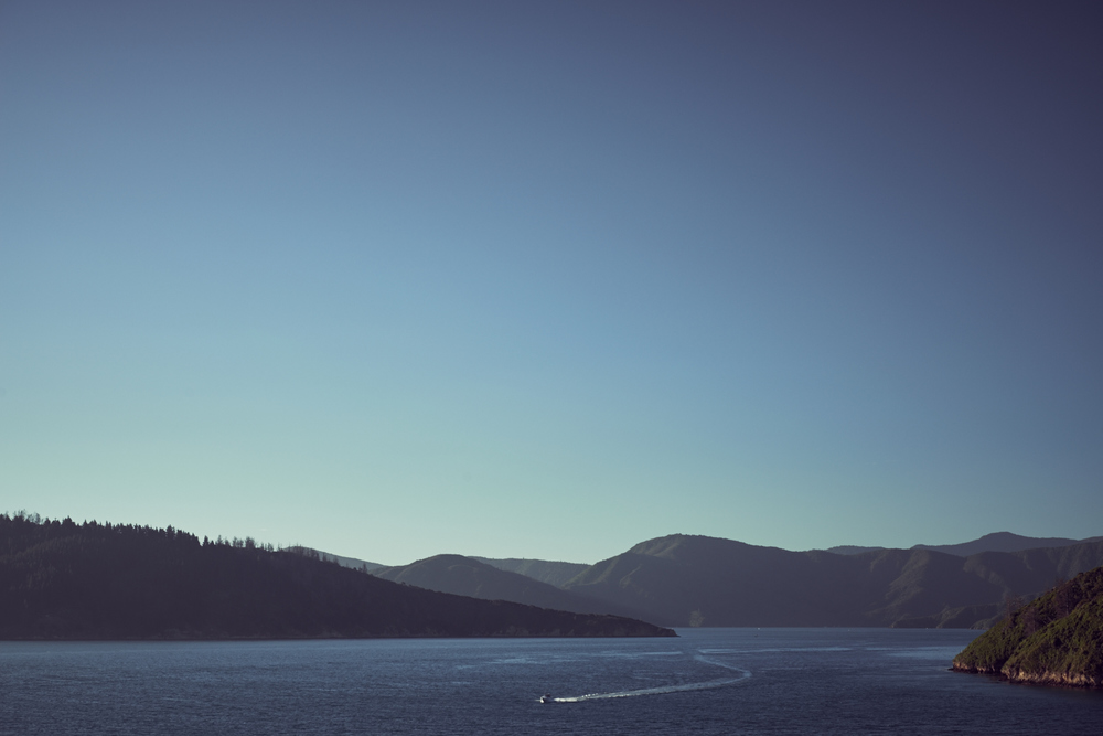 South-Island-0316.jpg