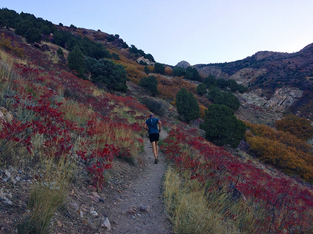 Starting out on the Olympus trail. Definitely no lack of colors in the local flora.Photo: Brody