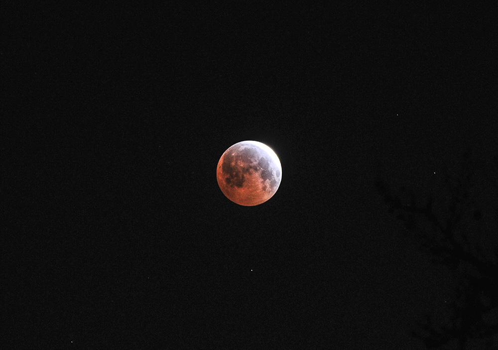 Lunar eclipse / blood moon on Saturday morning.