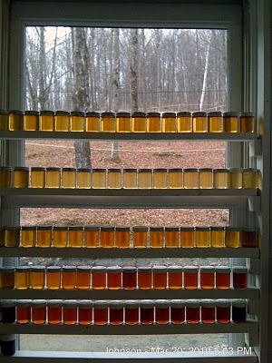 1 Vial of Maple Syrup for every Sugaring day - from 1st to last - at Butternut Mountain Farm