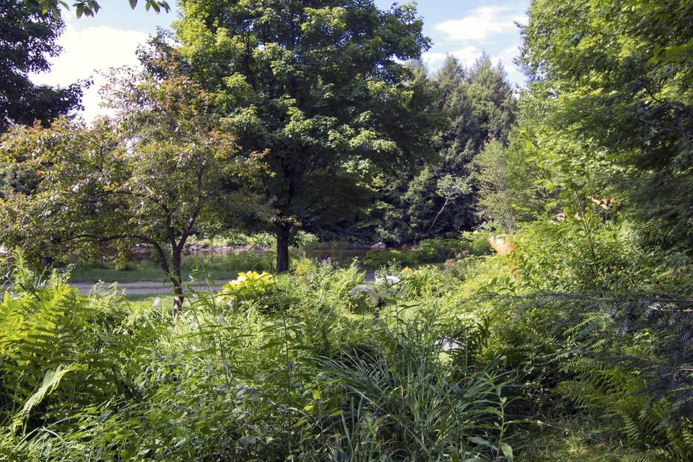 42-IMG_0583 Lipke Driveway side Garden to River.jpg