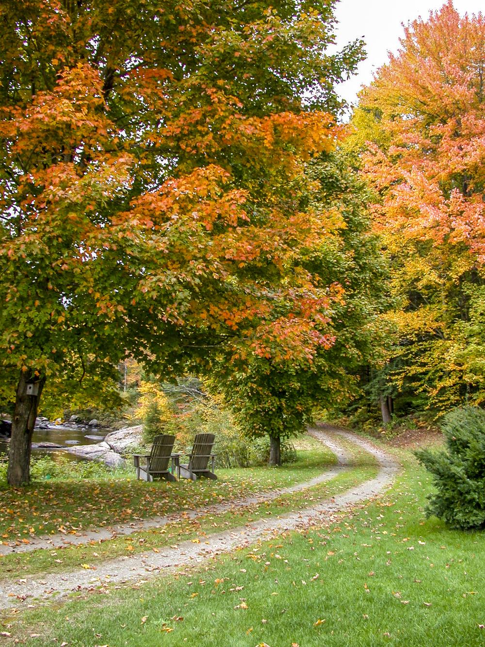 45-Lipke -- autumn 4.jpg