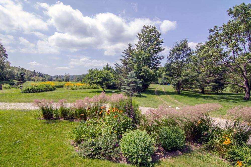 23-IMG_2143 Wodicka Zatz Gardens to Meadow & Easement Driveway.jpg