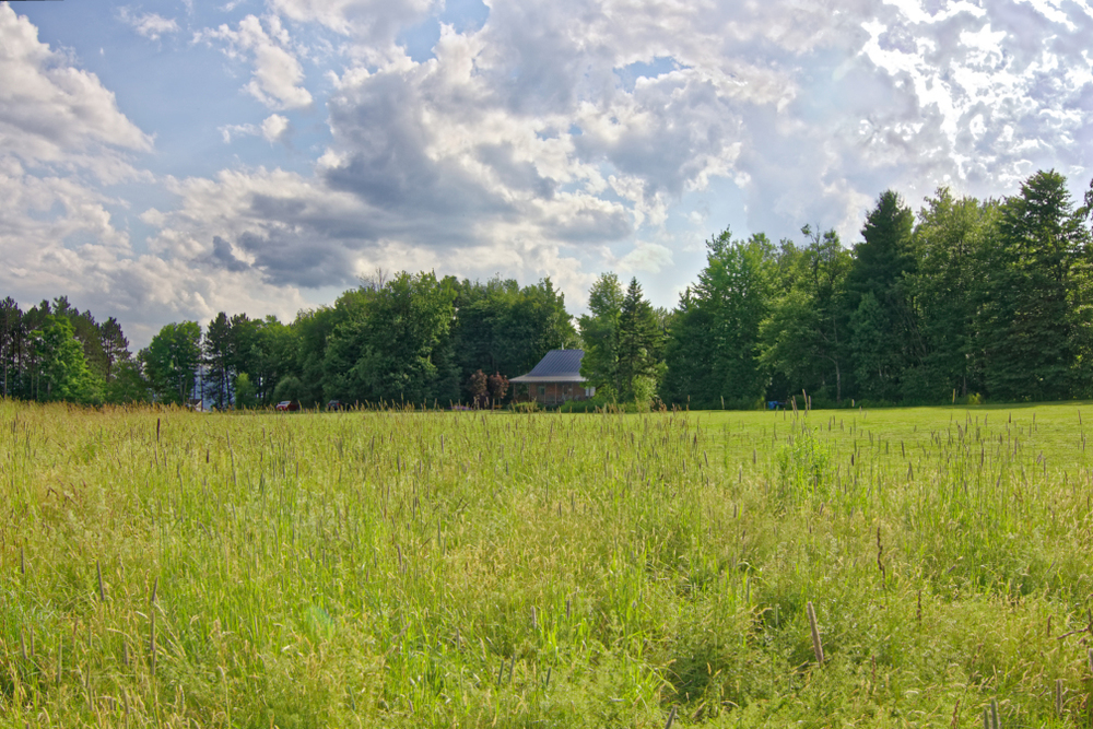 Custom-built log home on 15+ acres with beautiful eastern views
