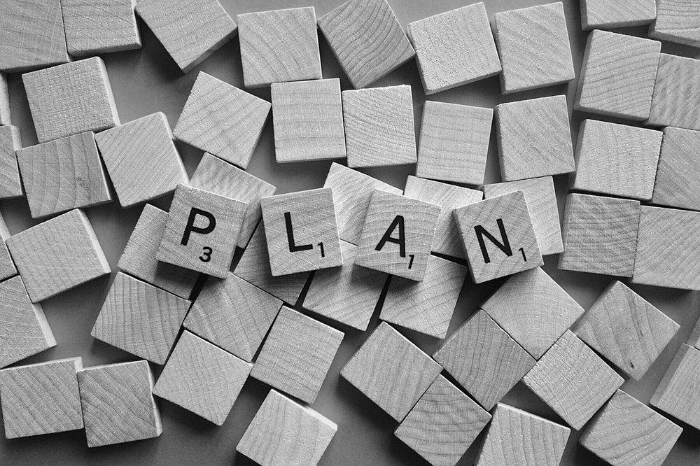 plan www.wealthandrisk.nz