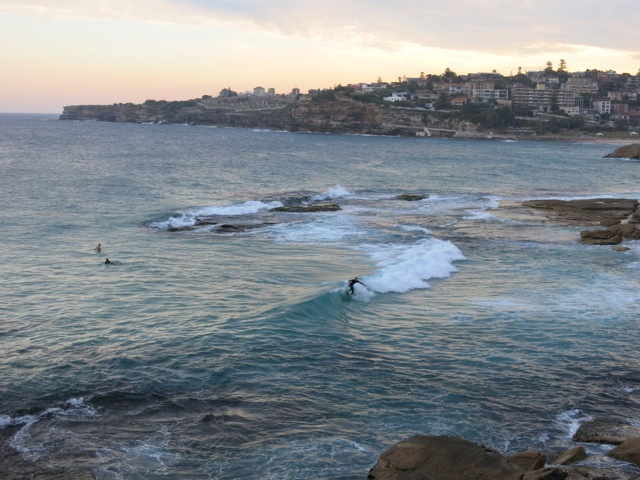 Bondi to Bronte walk