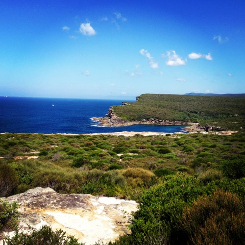 Stunning vistas in the Royal National Park