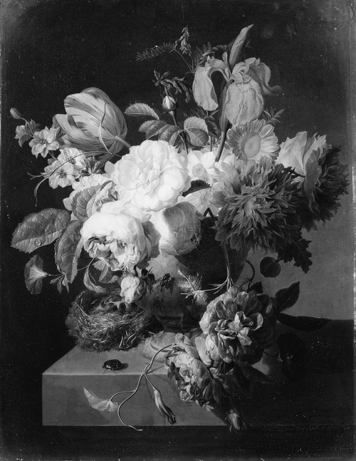 990000 :      Flowers in a Stone Vase, 1786    Peter Faes