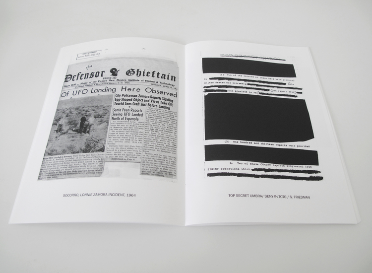 Anatomy of a Phenomenon Zine 24 Pages, 14.5 x 20.5 cm,  b/w Digital, Edition of 100, 2014