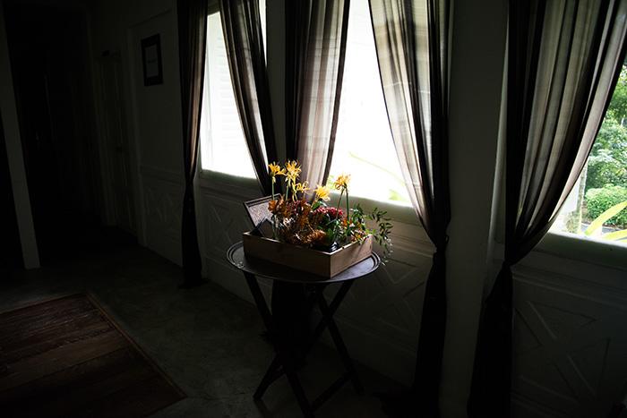 Poppy Flora Studio, Copyright.
