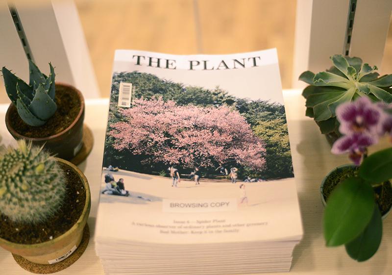 poppyflorastudio - the plant issue