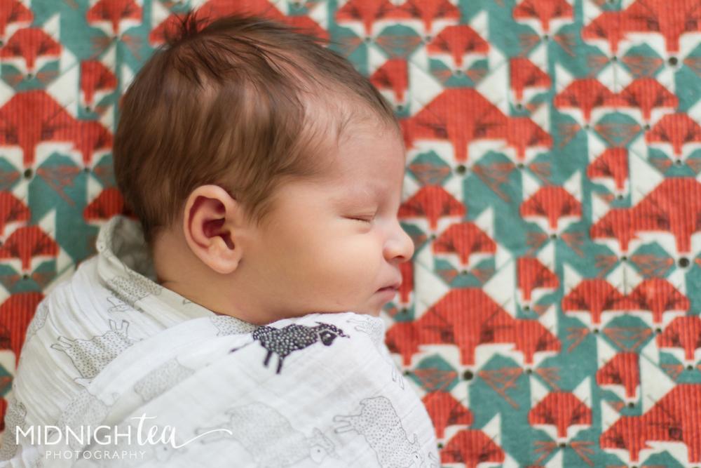 Newborn_Jet_Share-34.jpg
