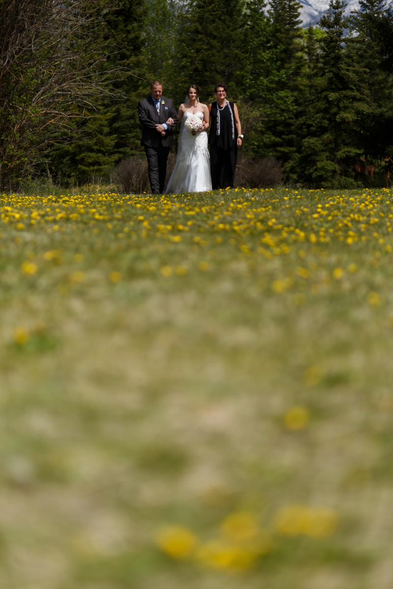 K+KPhotography_S+CWedding_Share-254.jpg