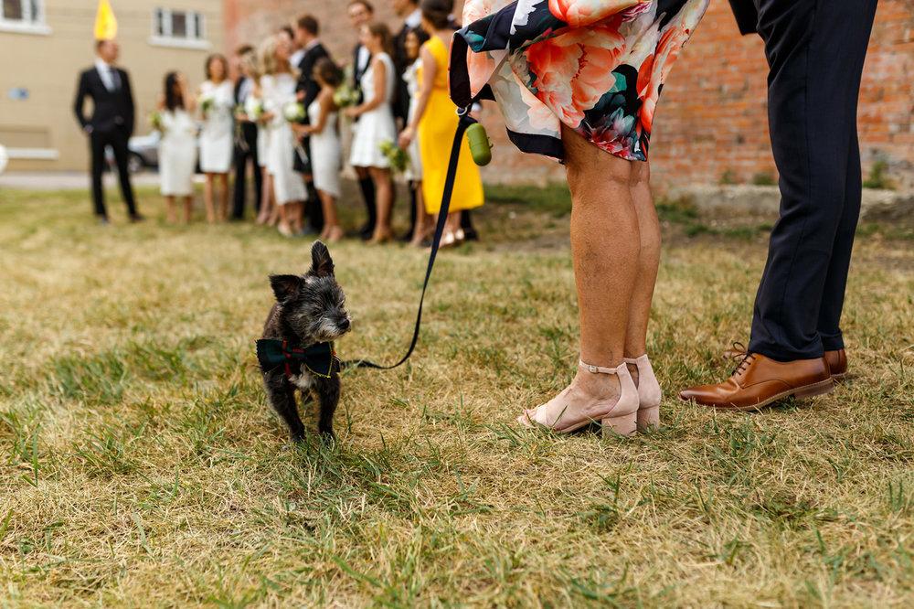 057-calgary-wedding-photographers.jpg