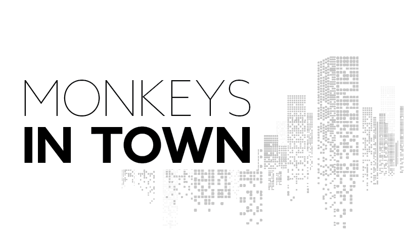 Monkeys in Town