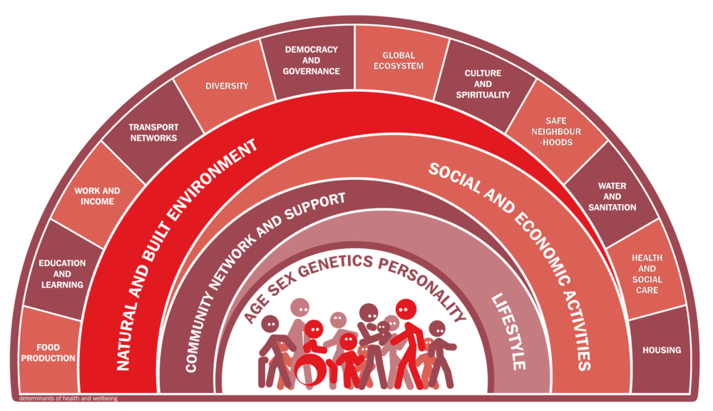 Social Determinants of Health Rainbow by Vohra S from various original by Dahlgren Whitehead 1991 - Red transparent.png