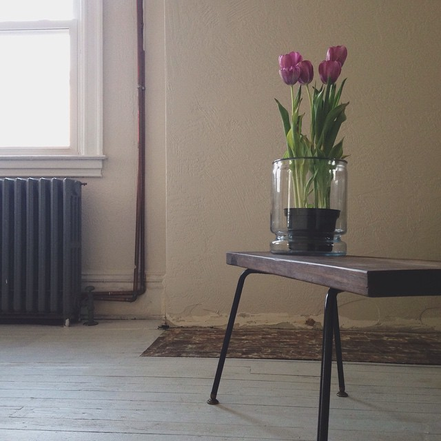 The sun is coming out [at least for a little while]     Thanks @cyndibuda for the tulips!    #tulip #spring #morning
