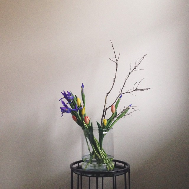 Goodmorning, Spring. As an aside - our countertops are being delivered today! #spring #tulip #iris #fresh #floral #pittsburgh #morning