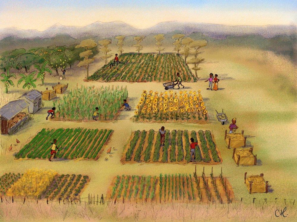 4_Farming_Scene_Commercial_Plot.jpg