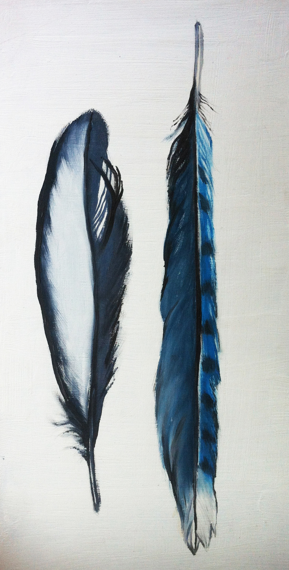 feather2.jpg