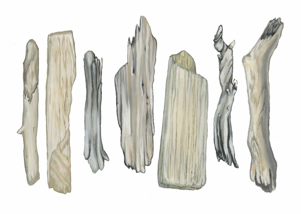 Driftwood Print