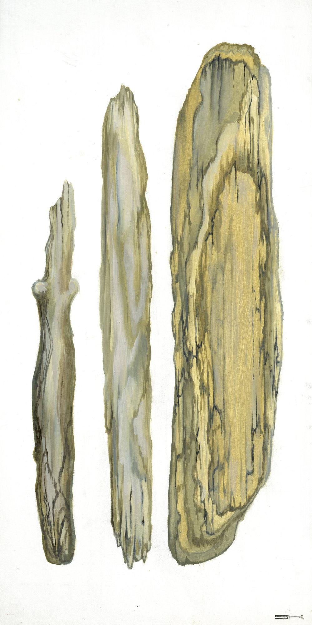 driftwood16.jpg