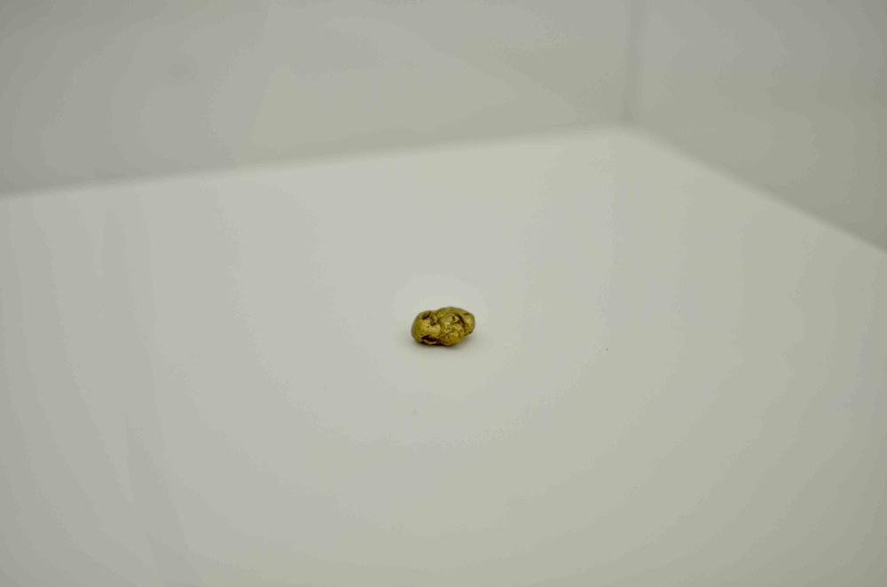 Dina Danish, Brass Replica of Stone Age Chewing Gum, 2013, Brass,10 x 6 x 6 mm. Edition 1 of 5 + 2 AP