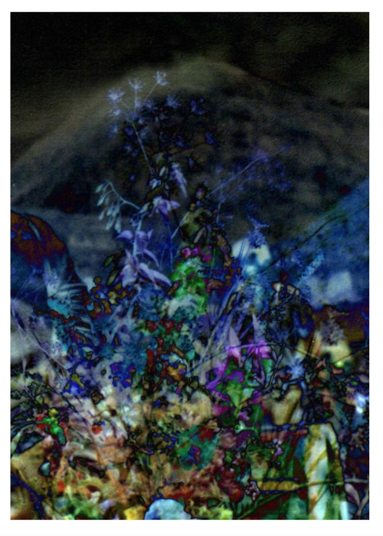 Spectral Days, C-print, 85 x 60 cm, 2013.