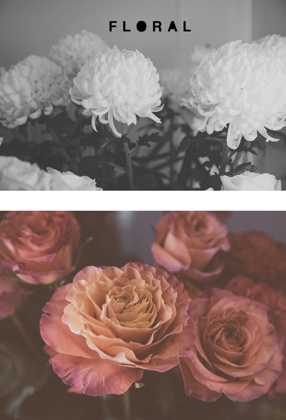 blumen-cafe-floral-ottawa.jpg