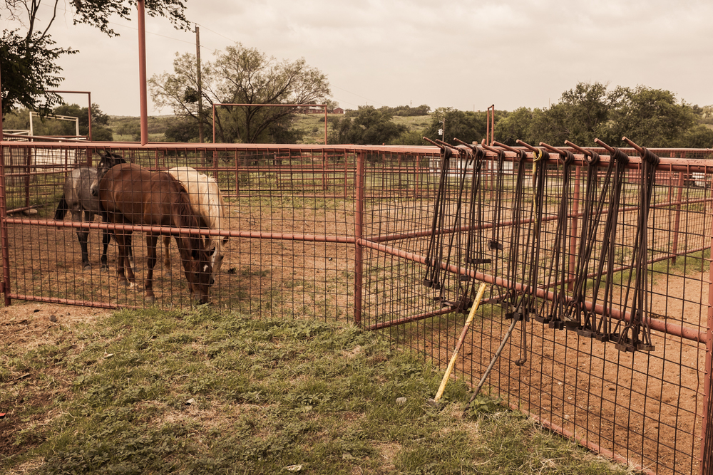 A variety of brands hang on a fence while mares graze in a pen.