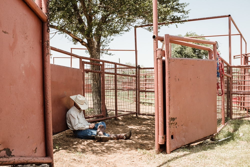 After all of the colts have been branded and the mares have been brought back to their pens, a cowboy rests under a tree in one of the pens.