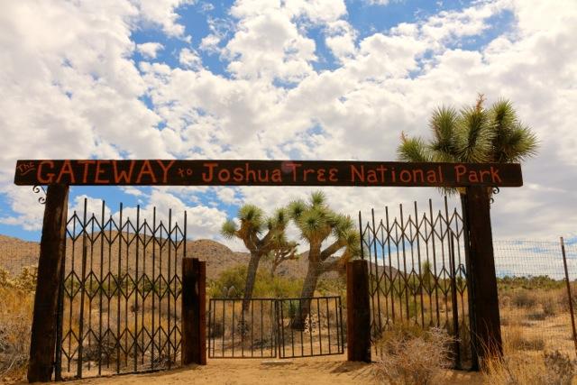 Thunderbird Lodge Retreat: Park View Cabin