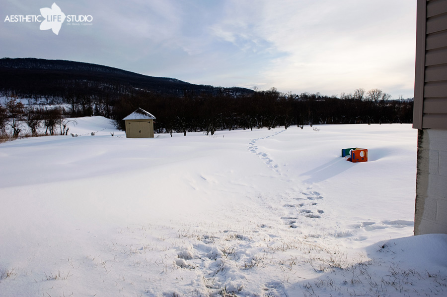 snow_0006