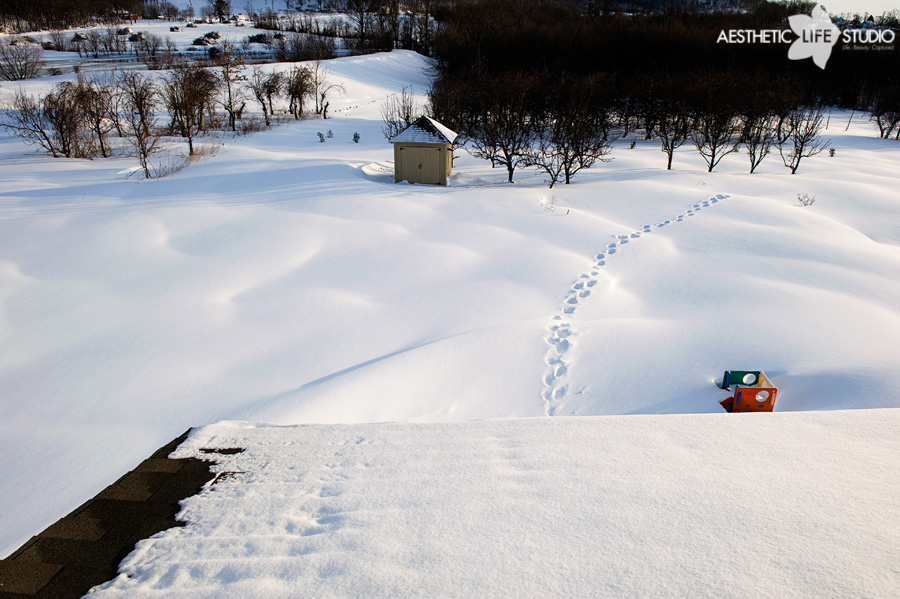 snow_0007