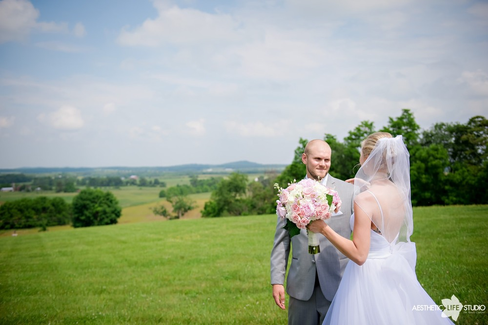 lodges at gettysburg wedding 033.jpg
