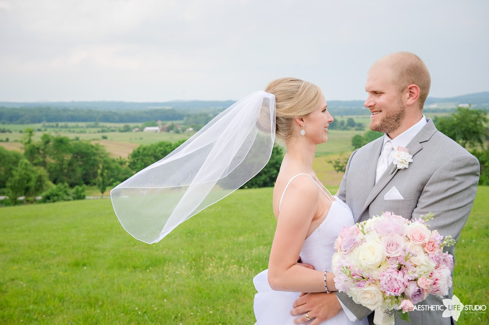 lodges at gettysburg wedding 082.jpg