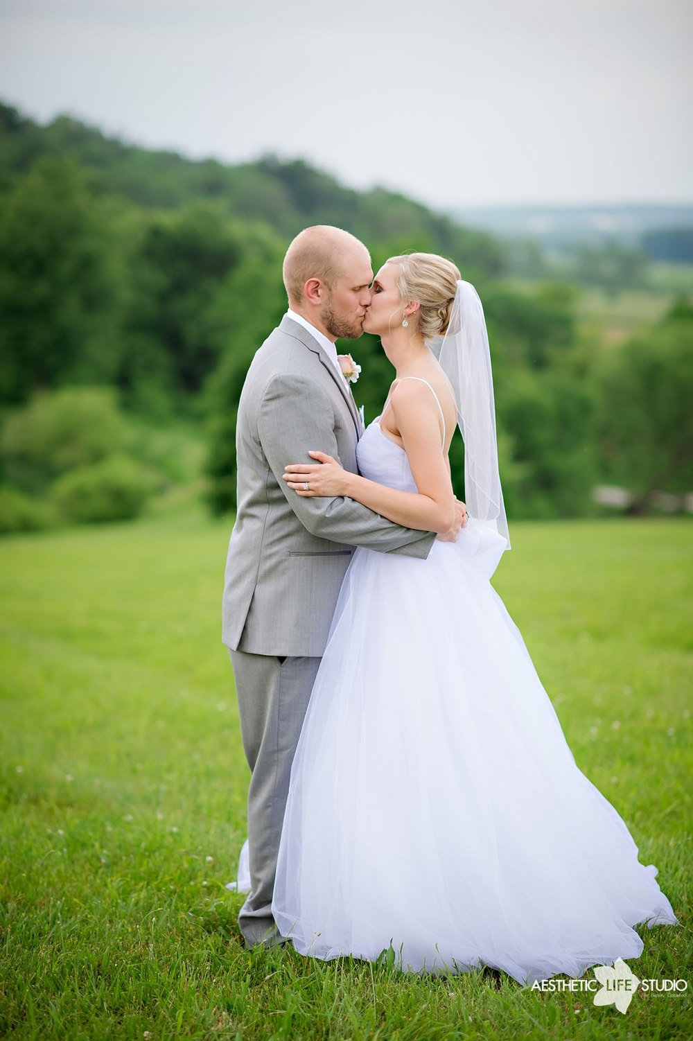 lodges at gettysburg wedding 088.jpg