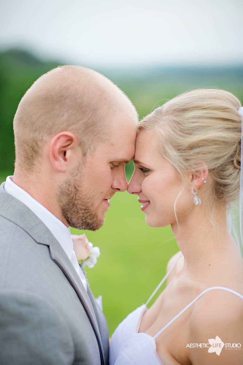 lodges at gettysburg wedding 087.jpg