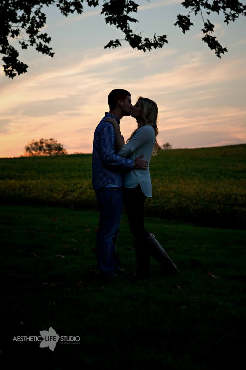 renfrew park waynesboro pa engagement session-14.jpg