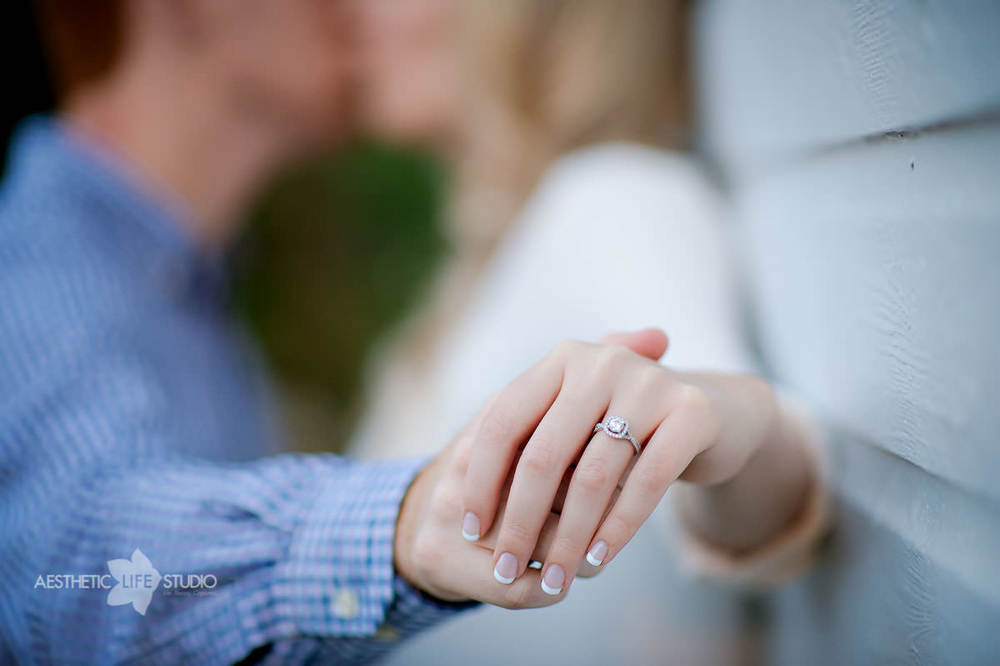 renfrew park waynesboro pa engagement session-17.jpg