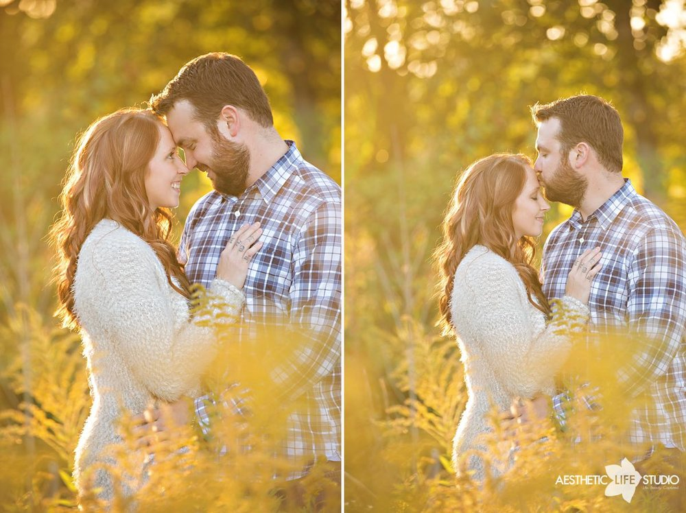 waynesboro pa renfrew engagement session 005.jpg